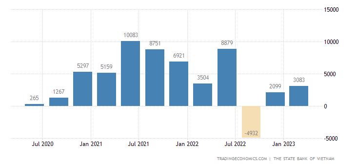 Vietnam Capital Flows